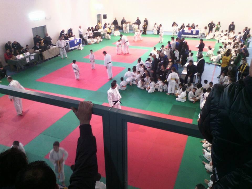 Judo Sedilo (6)