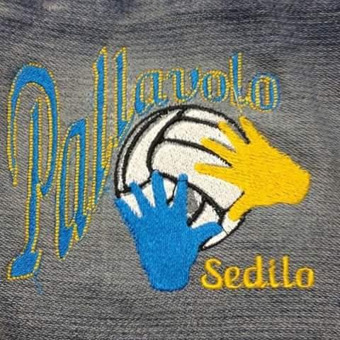Dal 5 ottobre scuola di Pallavolo a Sedilo per Under 13/14/16