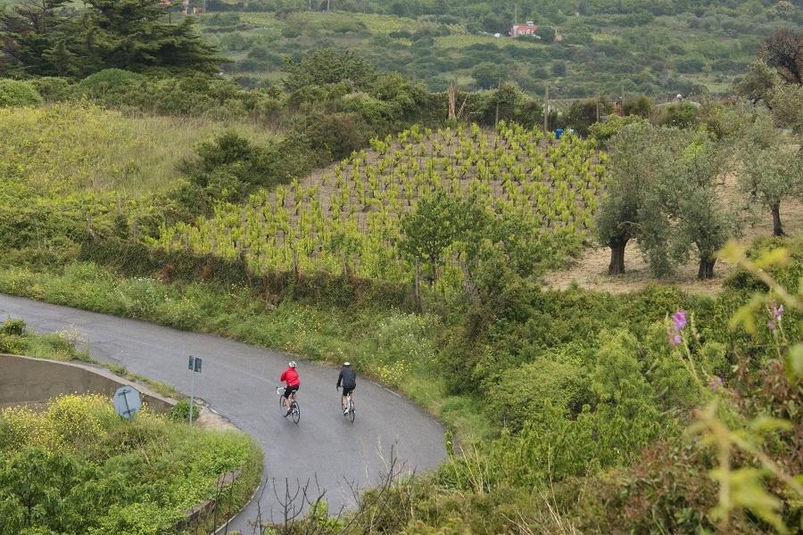 BIKE HOTEL/  Anche Oristano, Bosa, Cabras, Macomer, Tresnuraghes, Santulussurgiu e Ula Tirso nella rete isolana del cicloturismo